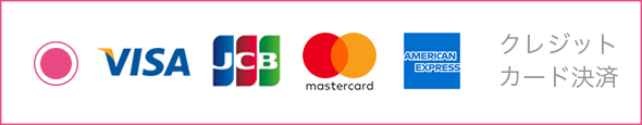 Payment button credit selected0625